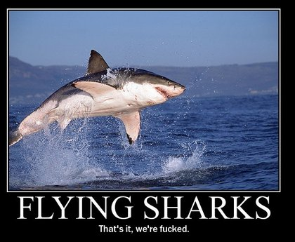 flyin-sharks.jpg